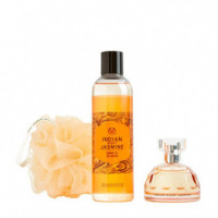 Indian Night Jasmine Duo