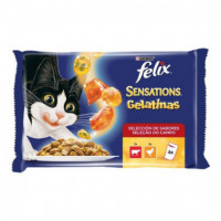 FELIX Sensations Buey/pollo/tomate 100GR