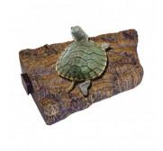Reptiles y tortugas