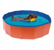 Accesorios de verano para perros
