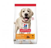 Alimentación seca para perros adultos