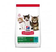 Alimentación seca para gatitos