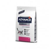 Dieta veterinaria para gatos